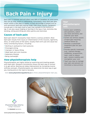 Back Pain & Injury Individual - customizable